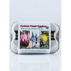 Fynbos Starter Pack Of Seeds - Eggbox