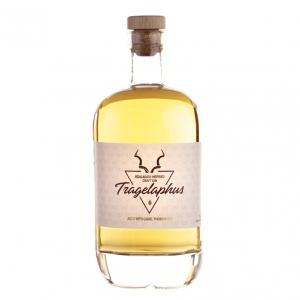Tragelaphus Tragelaphus Gin (BS)