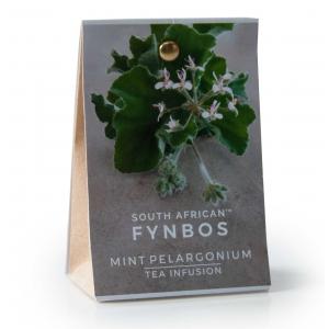 Cape Fynbos Mint...